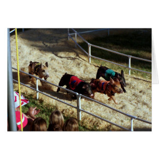 Pig race at the County Fair - Card