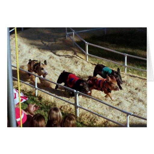 Pig race at the County Fair - Card