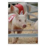Pig racing pink piglet number three greeting card
