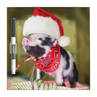 Pig santa claus - christmas pig - piglet dry erase board