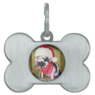 Pig santa claus - christmas pig - piglet pet tag