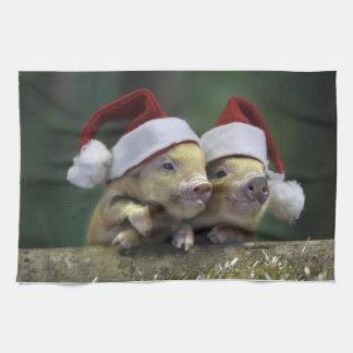 Pig santa claus - christmas pig - three pigs kitchen towel