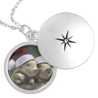 Pig santa claus - christmas pig - three pigs locket necklace