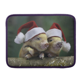 Pig santa claus - christmas pig - three pigs MacBook sleeve