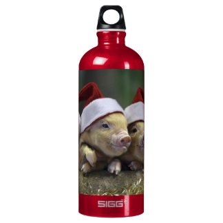 Pig santa claus - christmas pig - three pigs water bottle