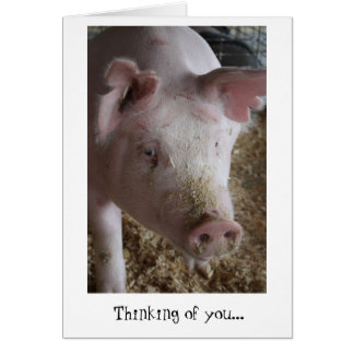 Pig Thinking of You Card
