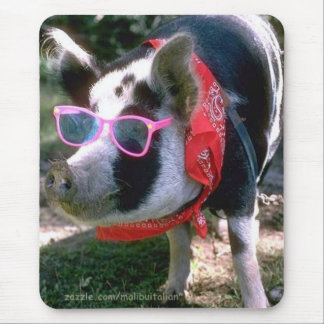 Pig With Sunglasses And Bandana Mouse Pad