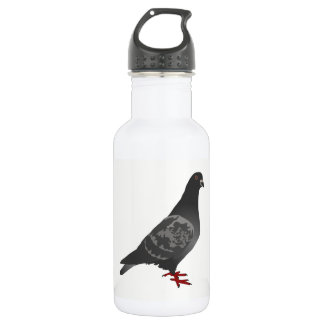 Pigeon 532 Ml Water Bottle