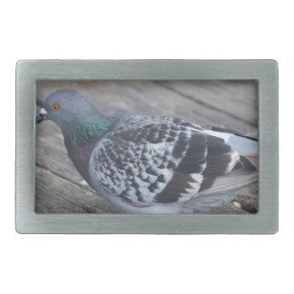 Pigeon Belt Buckle