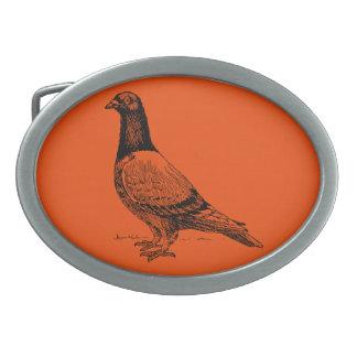 Pigeon Belt Buckles