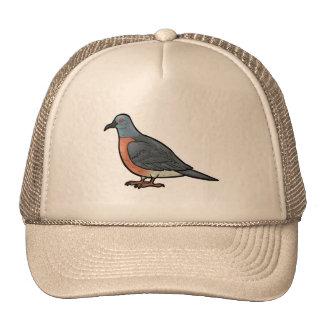 Pigeon de passager casquettes