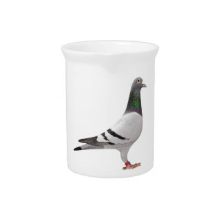 pigeon design pitcher