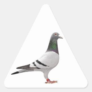 pigeon design triangle sticker