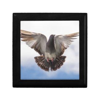 pigeon gift box