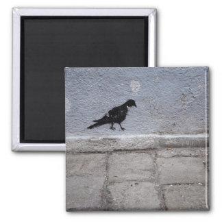 Pigeon Graffiti Magnet