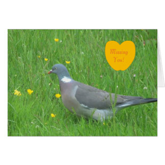 Pigeon image for Greeting card