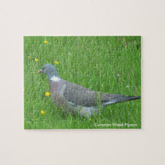 Pigeon image for Photo Puzzle with Gift Box