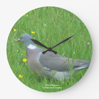Pigeon image for Round (Large) Wall Clock