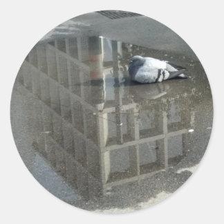 Pigeon Mirror Water Classic Round Sticker