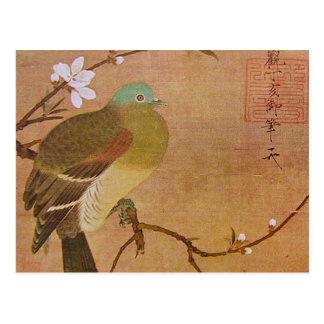 Pigeon on a Peach Branch Postcard