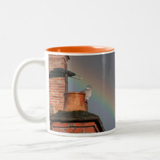 Pigeon on the Pot with Rainbow Mug