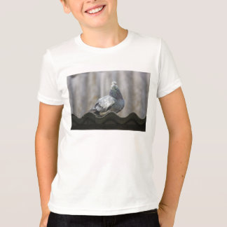 Pigeon on the roof. T-Shirt