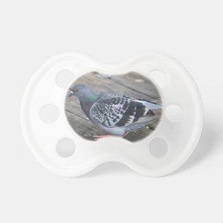 Pigeon Pacifier