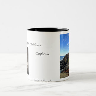 Pigeon Point mug