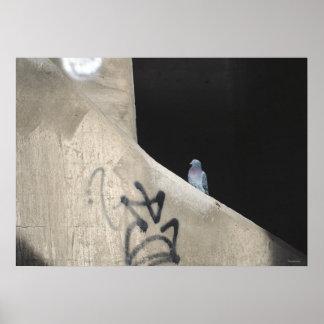 pigeon poo posters