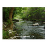 Pigeon River - Gatlinburg, TN Postcard