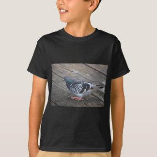 Pigeon T-Shirt