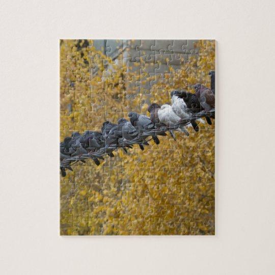 Pigeons Jigsaw Puzzle