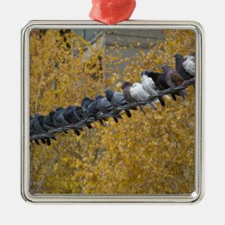 Pigeons Metal Ornament