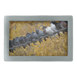 Pigeons Rectangular Belt Buckle
