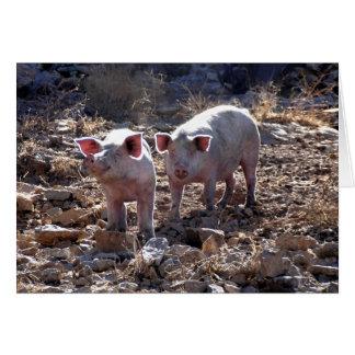Piggies Greeting Card