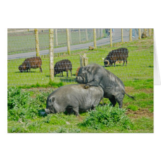 Piggy Back Ride Greeting Cards