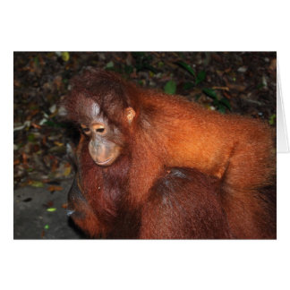 Piggy Back Ride from Orangutan Mother in Borneo Greeting Card