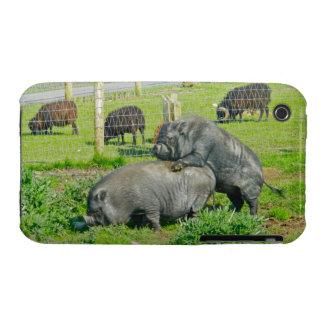 Piggy Back Ride iPhone 3 Case-Mate Cases