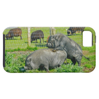Piggy Back Ride iPhone 5 Cases