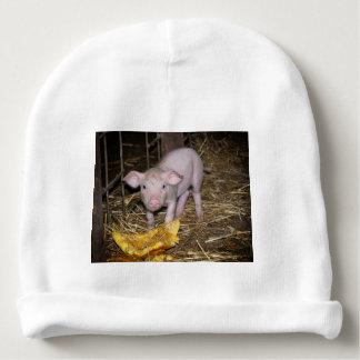 Piggy farm baby beanie