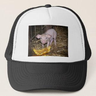 Piggy farm trucker hat