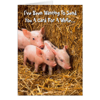 Piggy Pigs Piglet Thinking of You Card