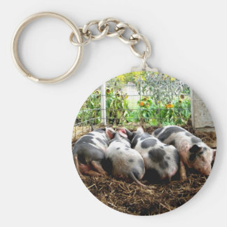 Piggy Pile Key Chain