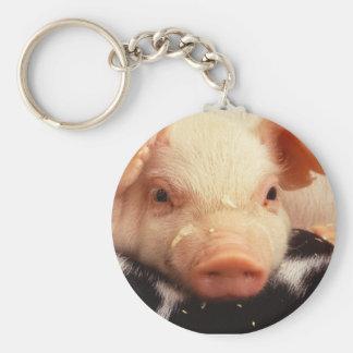 Piglet Pig Adorable Face Snout Keychain