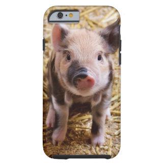 Piglet Tough iPhone 6 Case