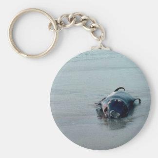 Pigmy Sperm Whale, Beached Keychain
