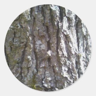 Pignut Hickory Tree Bark Classic Round Sticker