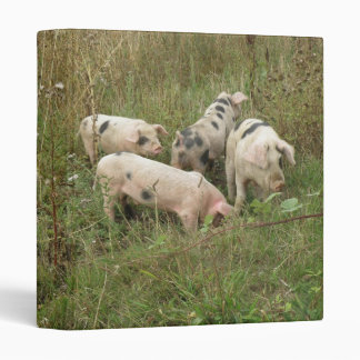 Pigs in a Field Photograph Album Vinyl Binder