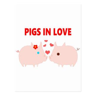 pigs in love postcard