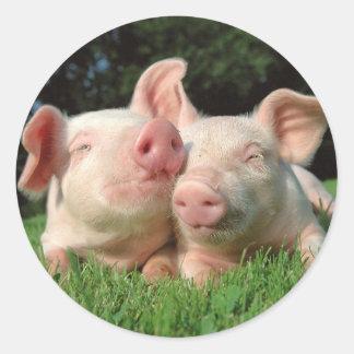 Pigs Round Sticker